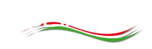 Image of Made in Italy logo